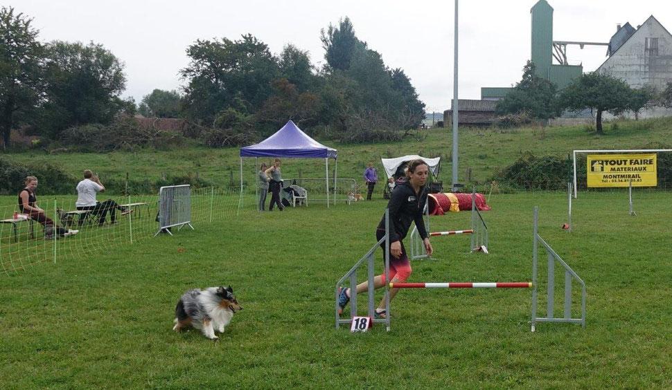 En agility, le binôme maître/chien doit prendre du plaisir et s'amuser.