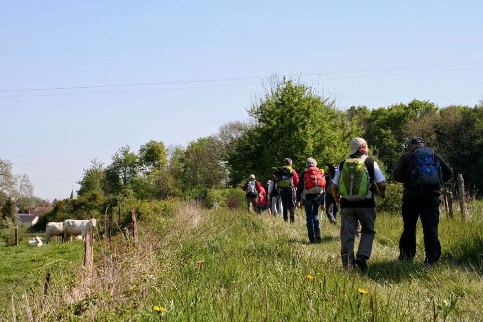 A Suizy-le-Franc, les parcours nature sont très prisés par les randonneurs.
