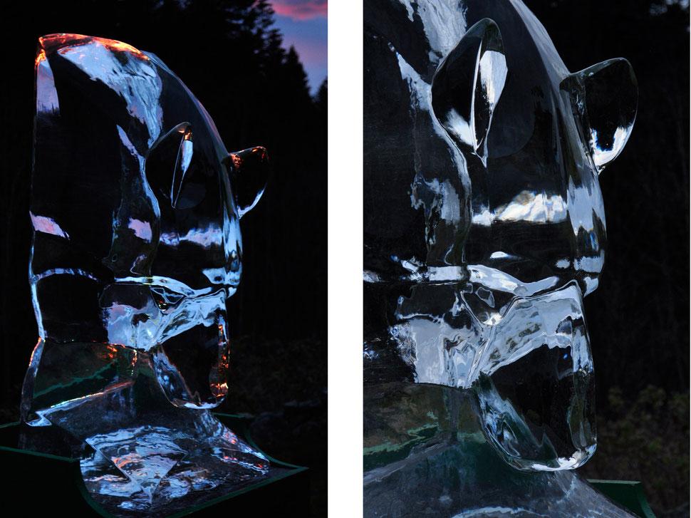 sculpture glace, sculpture ours, glace sculptée, glace transparente sculpture, sculpture animalière