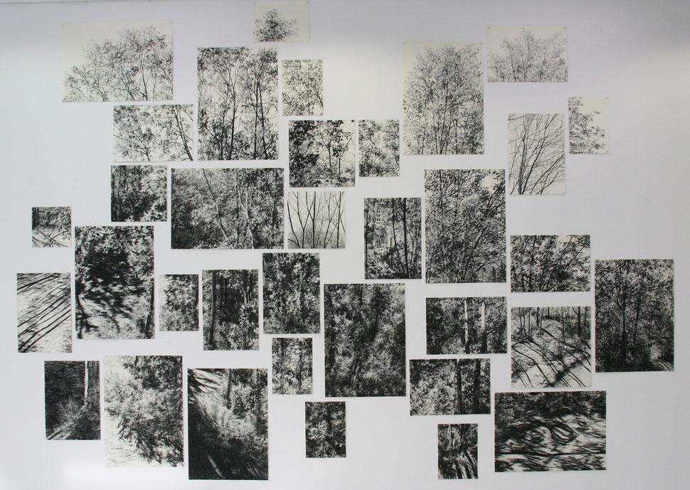 Spring, 2011, Kohle auf Papier, ca. 300x600 cm