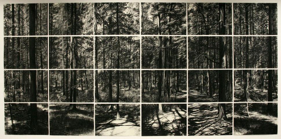 September, 2010, Kohle auf Papier, 200x420 cm