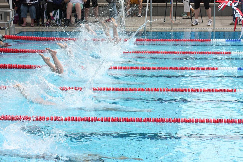 Bild: Schwimmverein Burgwedel - Pokalschwimmfest
