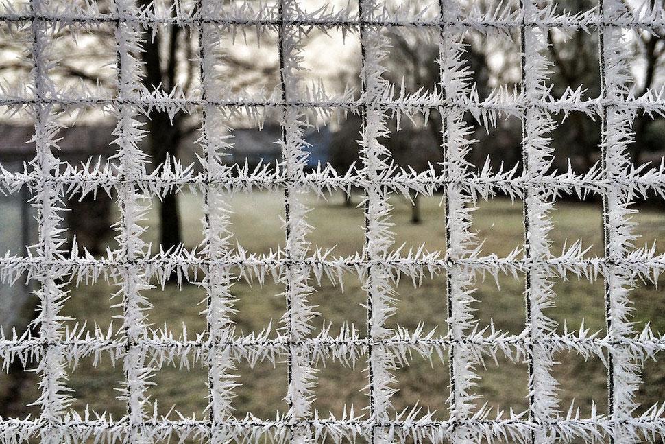 1.Frost Winter 2015/16