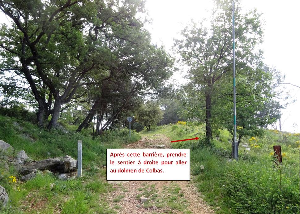 La montée terminée, on rencontre une deuxième barrière ; c'est là quil faut prendre un sentier à droite pour aller voir le dolmen de Colbas