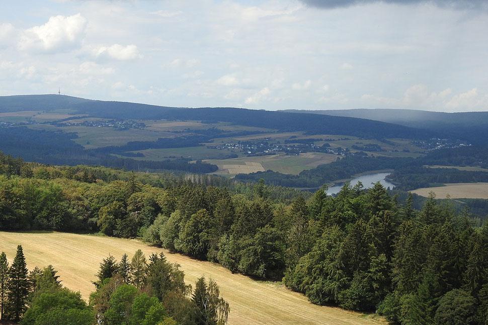 Вид с Вильденбурга на леса Хунсрюка