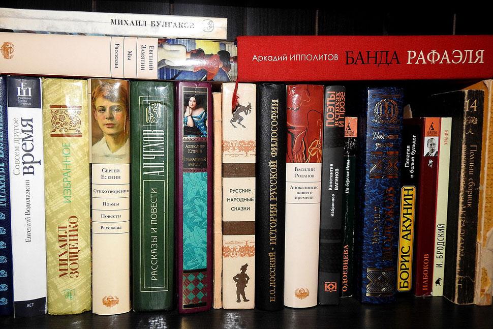 Russische Bücher im Bücherschranke