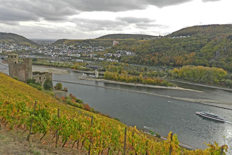 Рейнская долина в районе Бингена