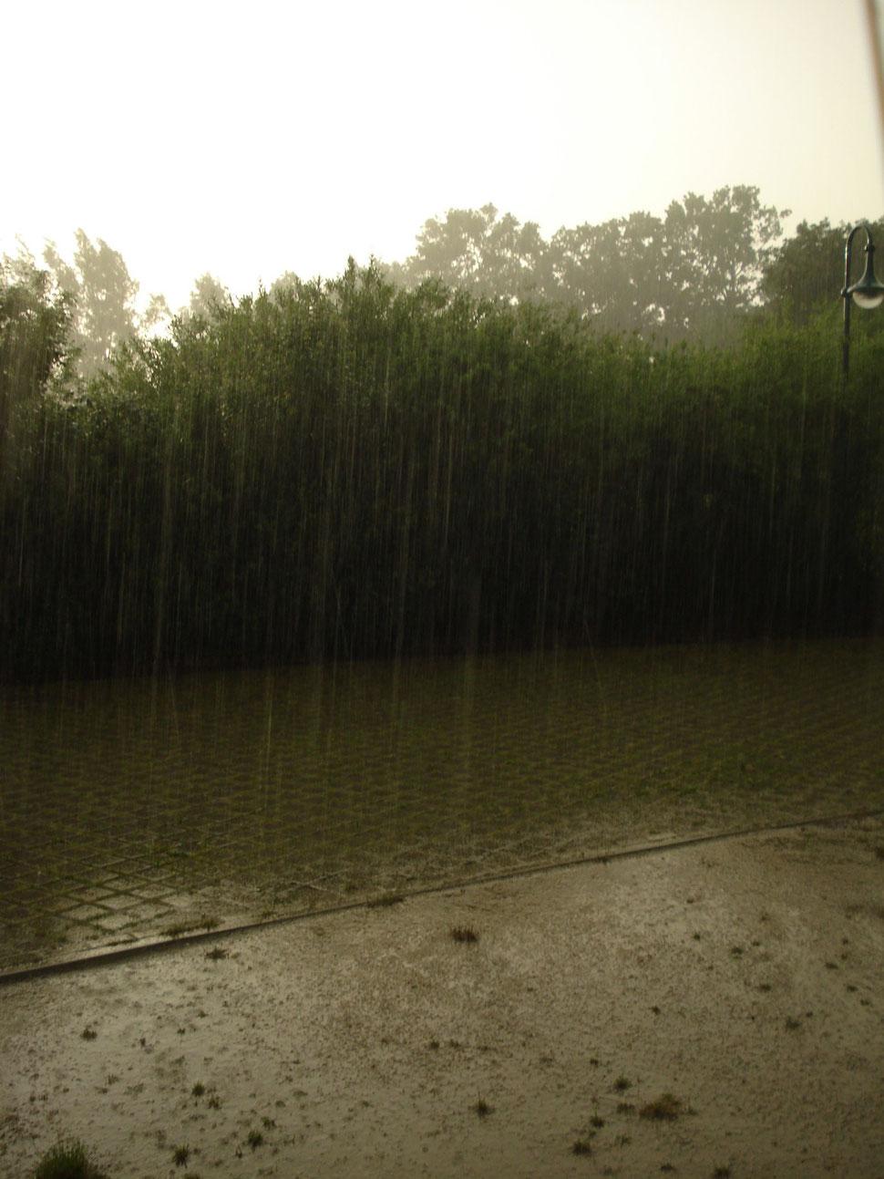 Regen Bienenbüttel