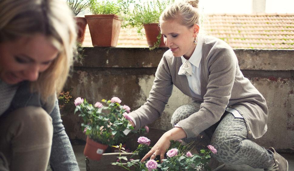 Offene Stelle Landschaftsgärtner | Florist