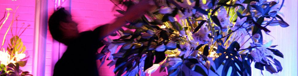 Eventdekoration Blumenschmuck Bühnendekoration Dekoration Blumen