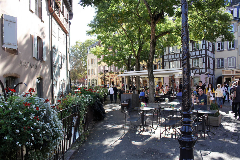 Frankreichreisen, Genuss und Kultur, Elsass Reisen