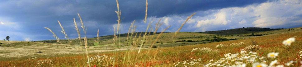 Paysage steppique du Causse Mejean - LOZERE Photo © Nadine Vilas