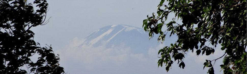 Blick von der OWSK auf den Kilimandscharo
