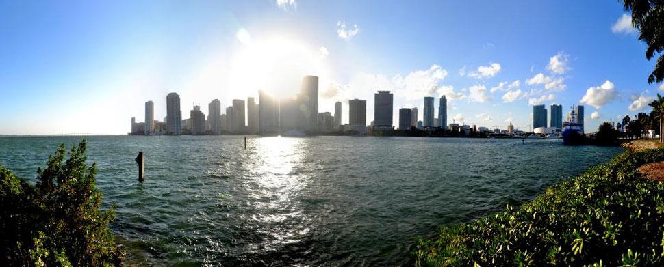 Miami Florida Skylineblick