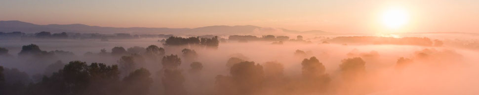 Morgenstimmung an der Donau   Foto: Josef Baumgartner