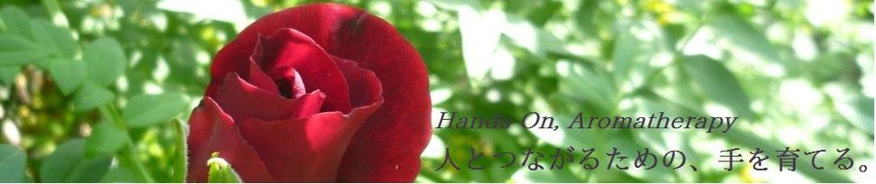 ハンズオン・アロマ実技指導のページへ