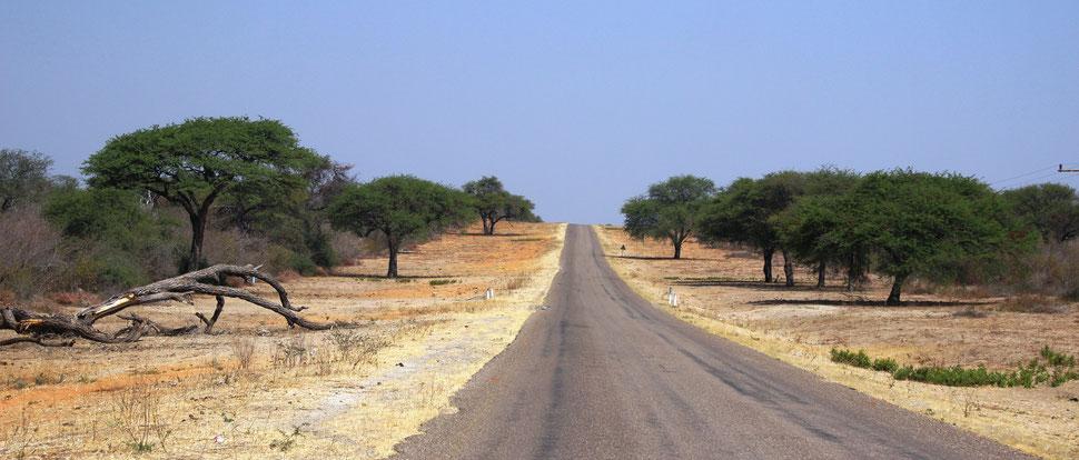 Okavango Botswana Tour du Monde Envie de Voyage