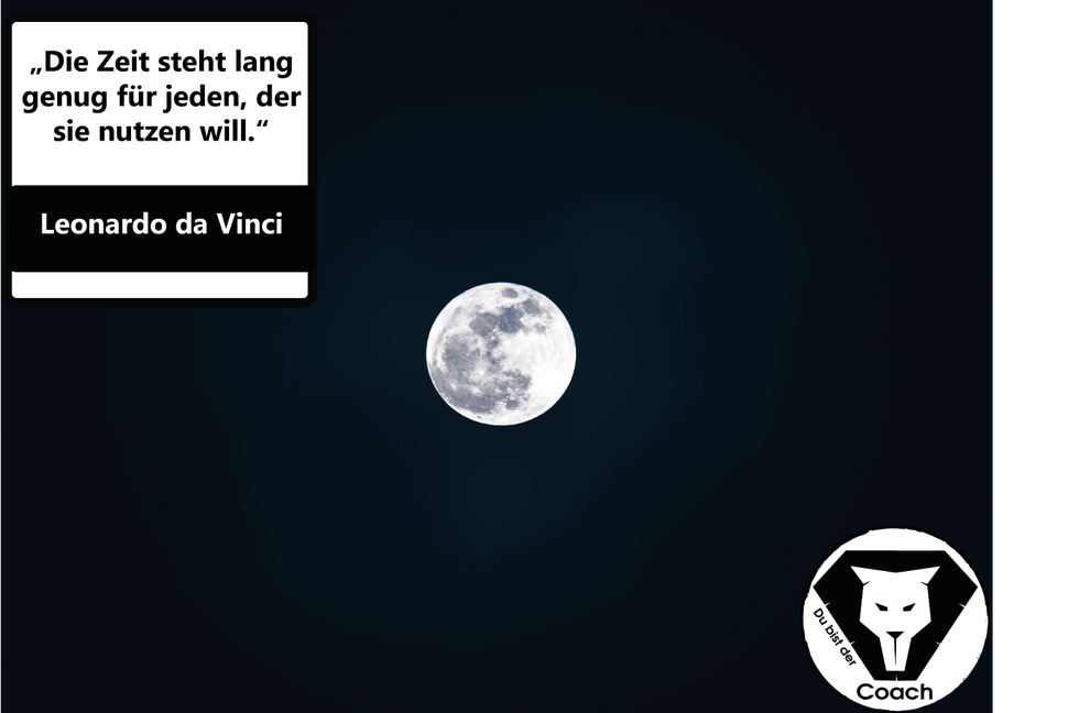 Leonardo Da Vinci Zitat Spruch Coach Vorbild