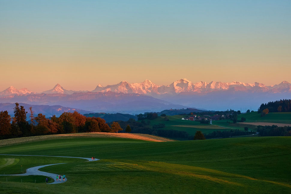 The image shows the photograph of a beautiful landscape in evening light. The alps in the background are lit by the last sunlight.