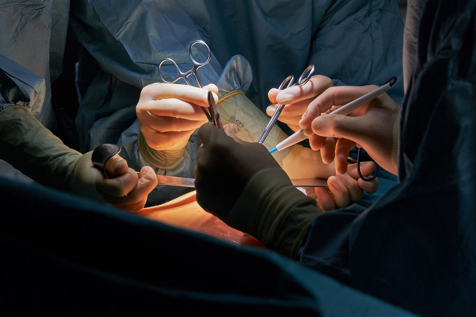 The image shows the aerial photograph of a group of people crossing a street in a snowstorm.