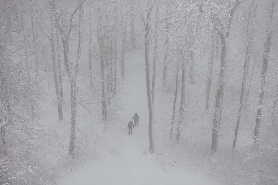 The image shows the photograph of a surfer with his surfboard under his arm walking into the sea.
