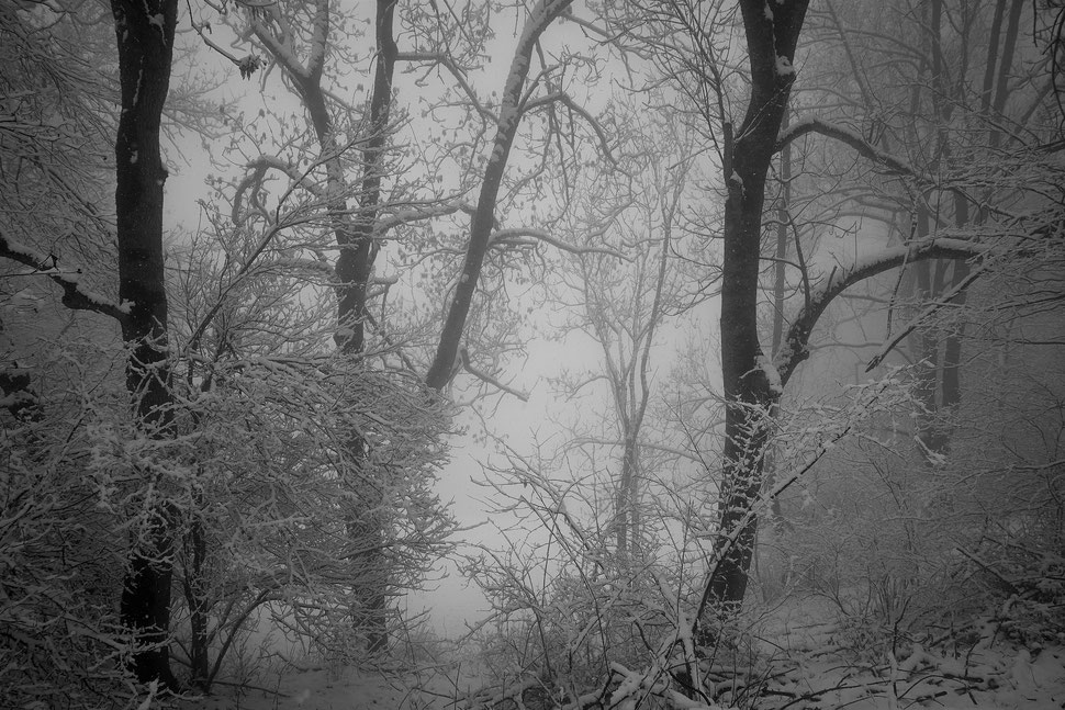 The image shows the photograph of a bridge, from which a young man - watched by a girl - is jumping into the water. It is a summer evening and a strom is brewing.