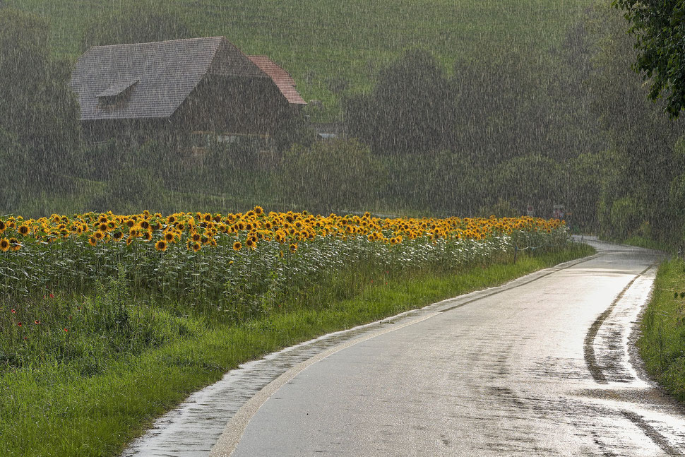 The image shows the nocturnal photograph of a waiting waiter and a piano player in an empty cafe in Venice.