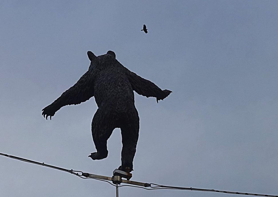The photograph shows an image of a statue of a bear, heraldic animal of the city of Bern, and a bird flying by (Bild von Bern).