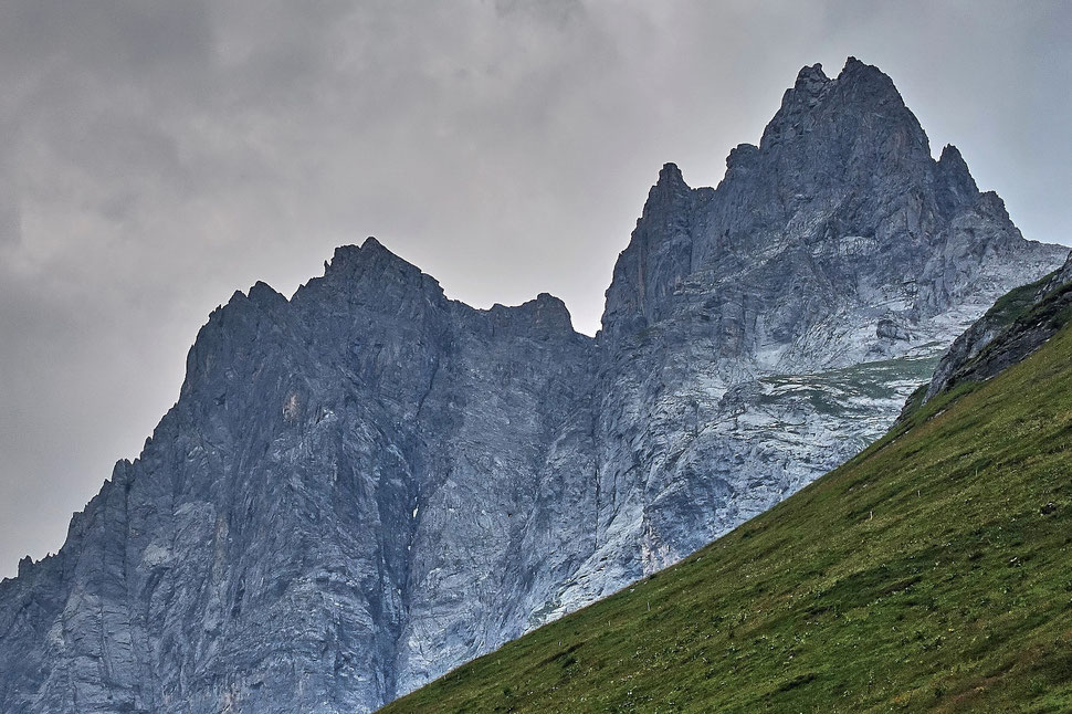 The image shows the photograph of large jagged and stark mountains against a grey sky. There is an alpine meadow in the foreground.