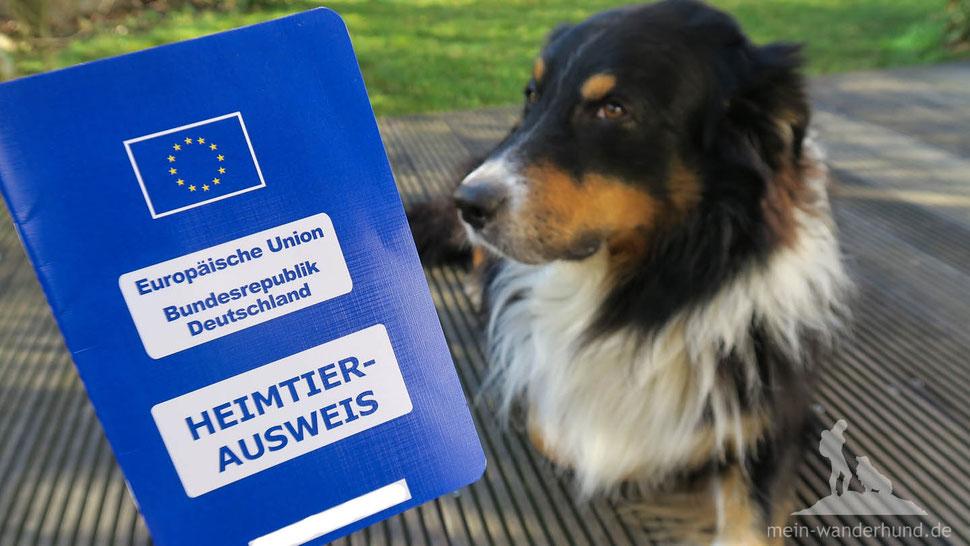 Mein Wanderhund; Urlaub mit Hund; Reisen mit Hund; EU-Ausweis; Heimtierausweis