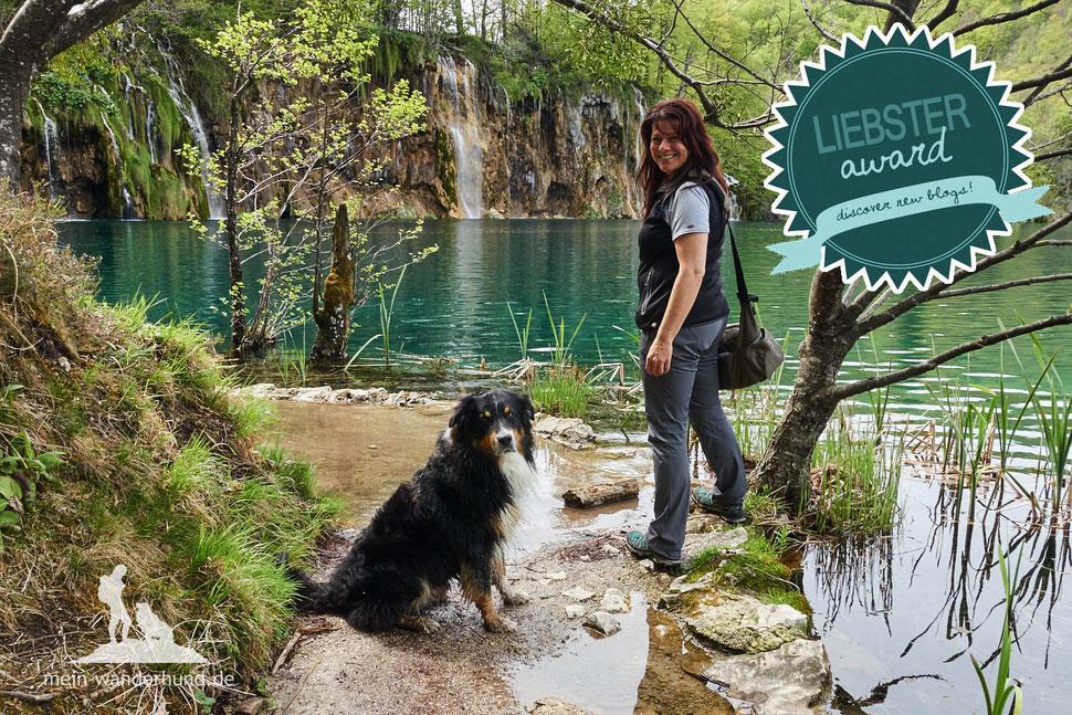 Wandern mit Hund, mein Wanderhund Ari, Andrea Obele, Liebster Award
