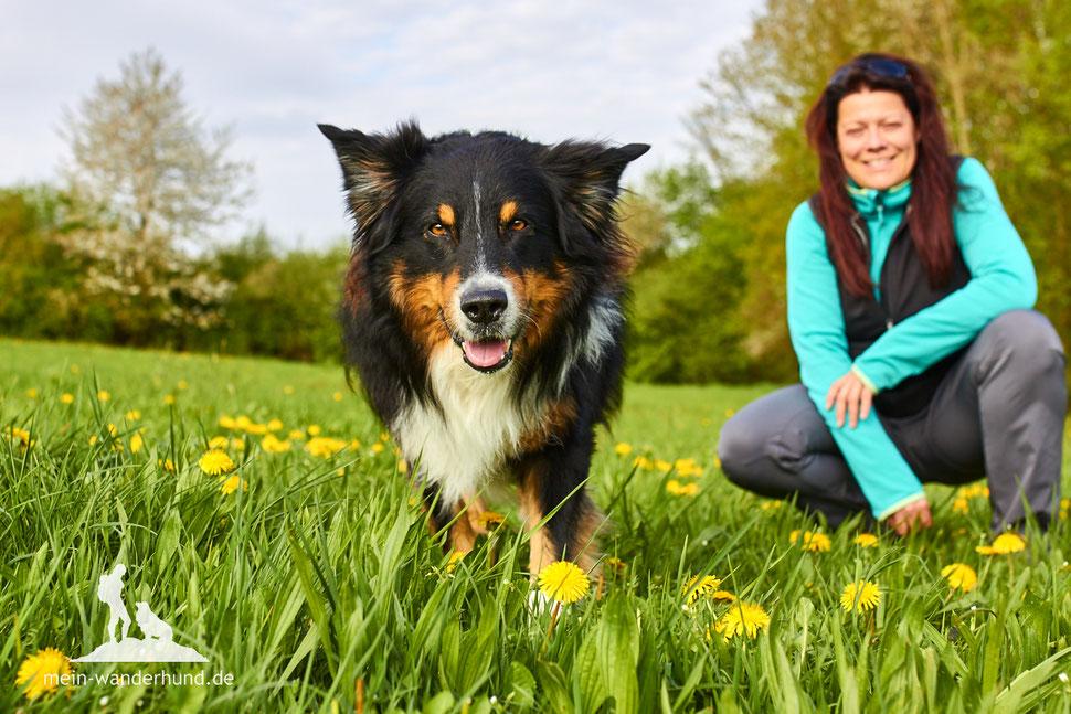 Wandern mit Hund, mein Wanderhund Ari, Andrea Obele; Physiotherapie mit Hund.