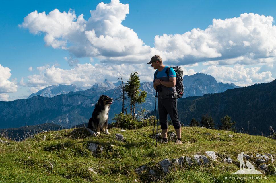 936b026936d7ba Die vier schönsten Frühjahrstouren mit Hund (Südbayern-Österreich ...
