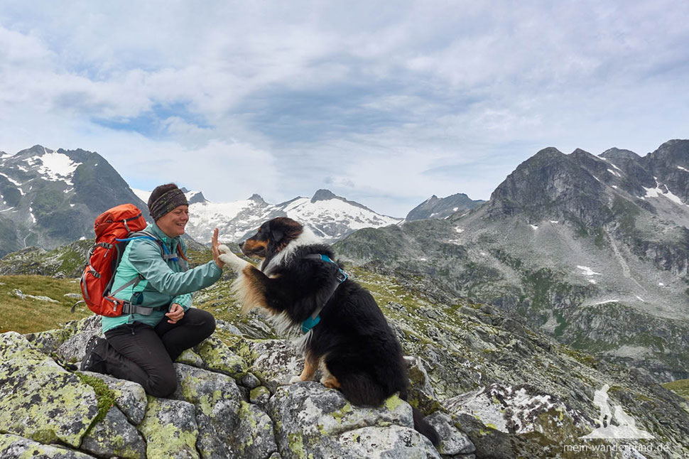 Andrea Obele Ari Mein Wanderhund Top 5 Artikel