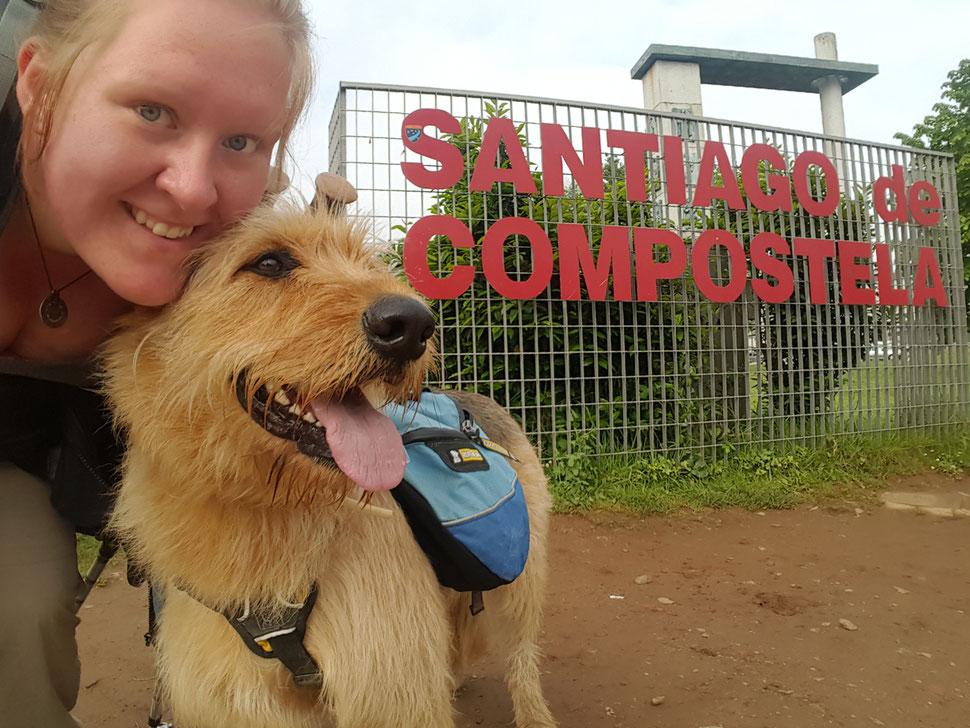 Mit Hund auf dem Jakobsweg; Nadine Vollbrecht