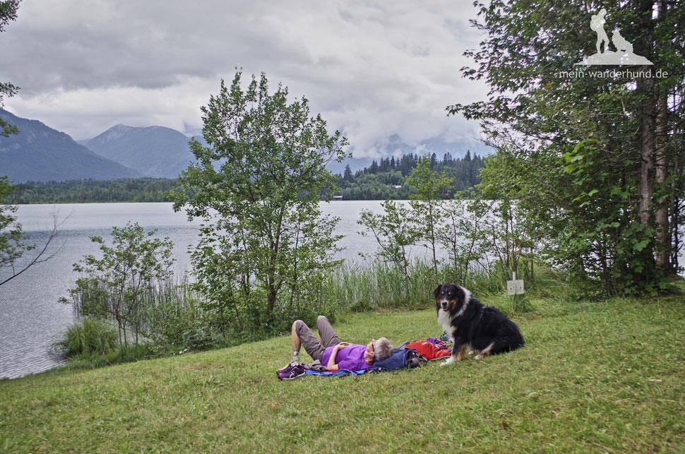 Wandern mit Hund, mein Wanderhund Ari, Andrea Obele, MIttenwald, Barmsee