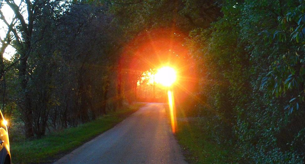 Lichtportal -  © www.lichtwesenfotografie.com