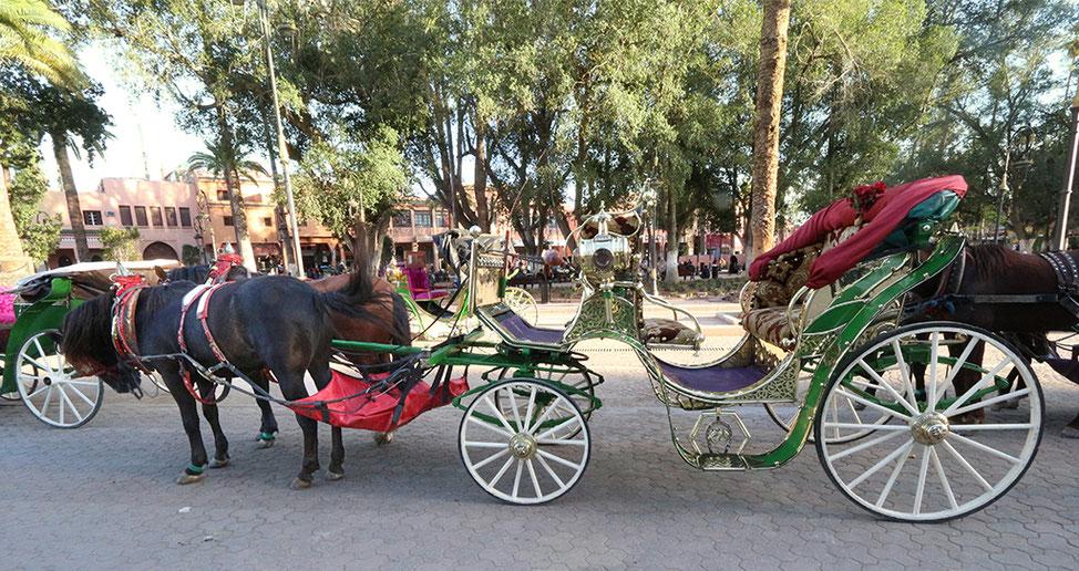 Pferdekutsche am Droschkenplatz unweit des Djemaa el Fna.