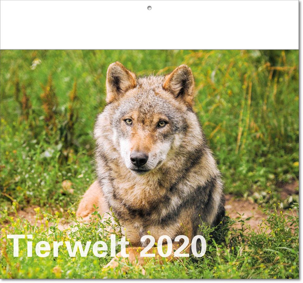"""Bildkalender """"Tierwelt 2019"""" 2019"""