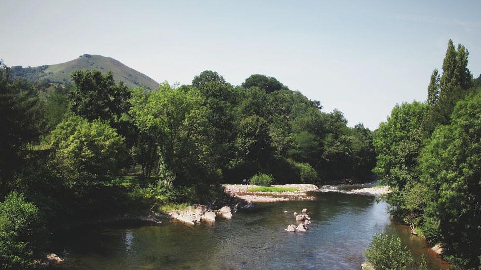 bigousteppes rivière arbre montagne Pyrénées