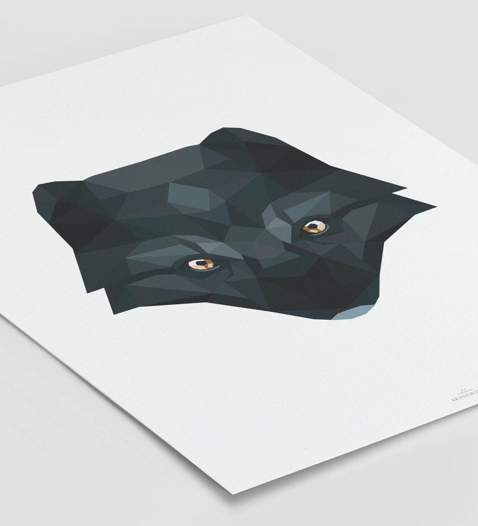 Poster Polarfuchs schwarz Geschenk