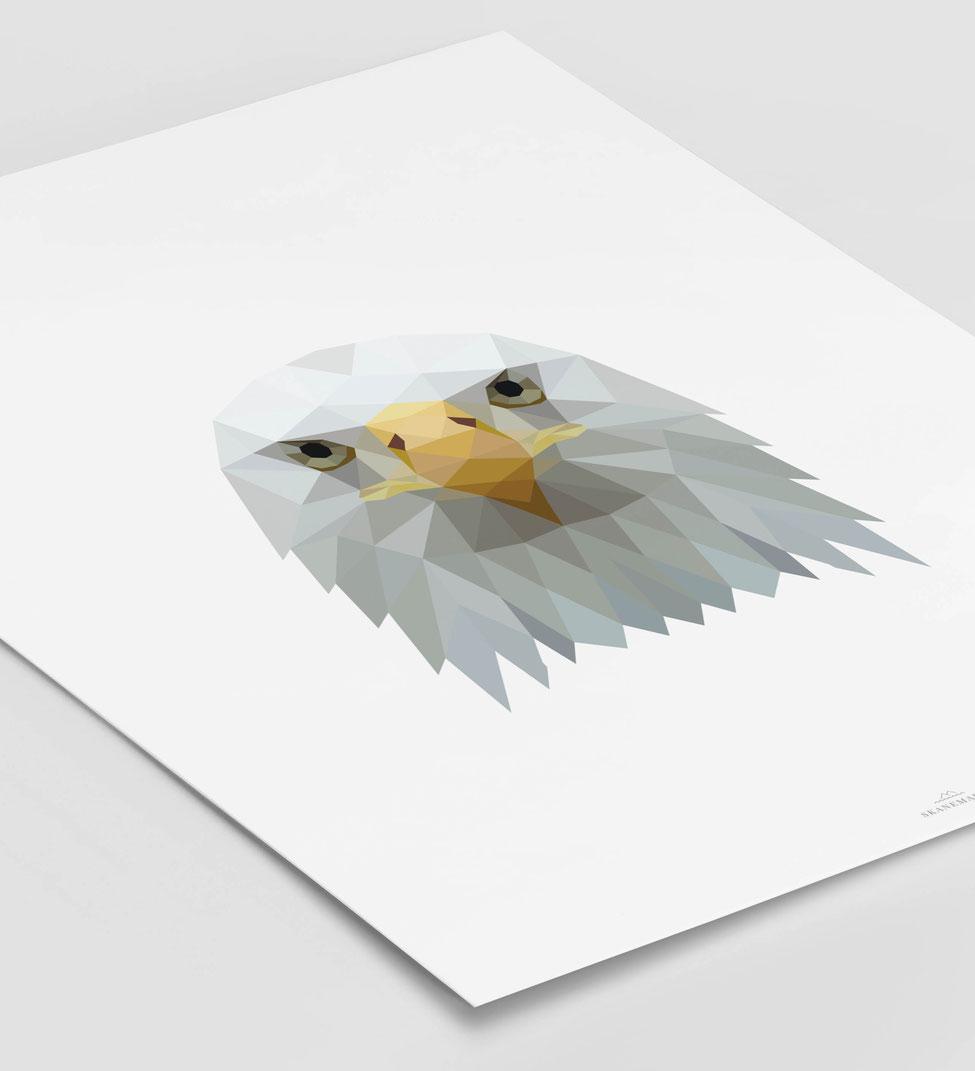 Poster Adler schwarz Geschenk