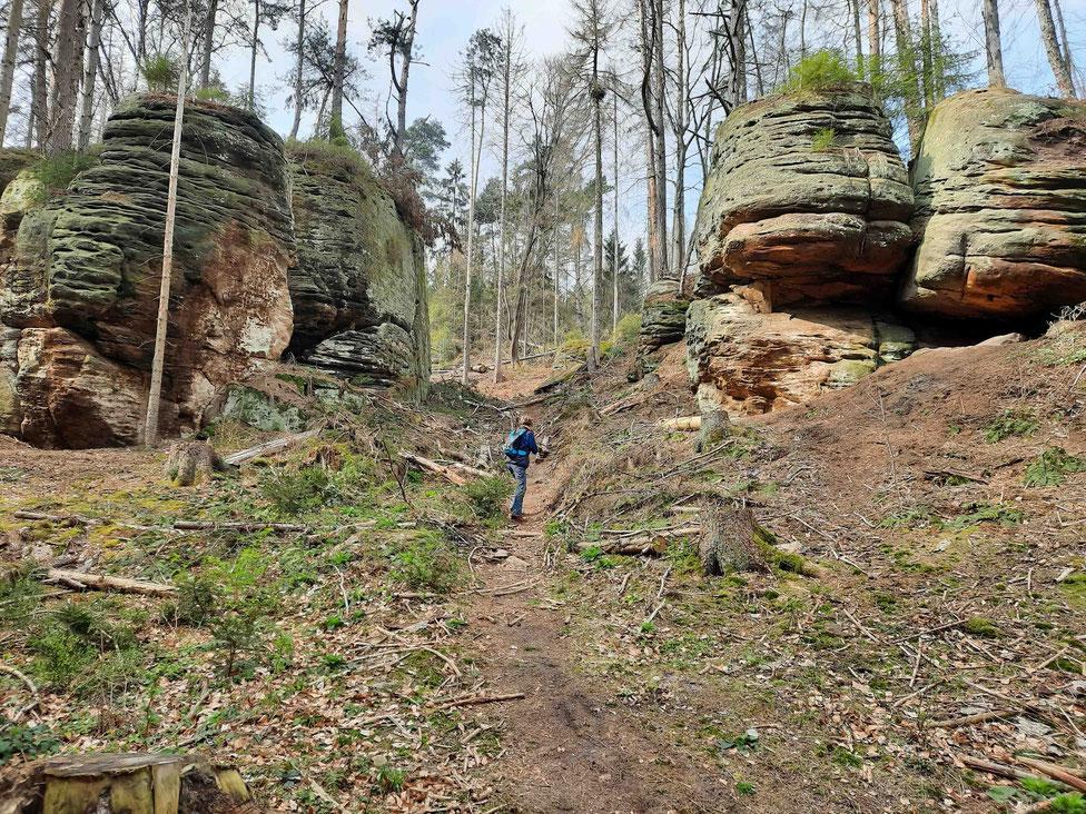 Eine Frau wandert zwischen großen Felsblöcken hinduch. Der Weg ist schmal und steil. Oben am Hang stehen mehrere Bäume.