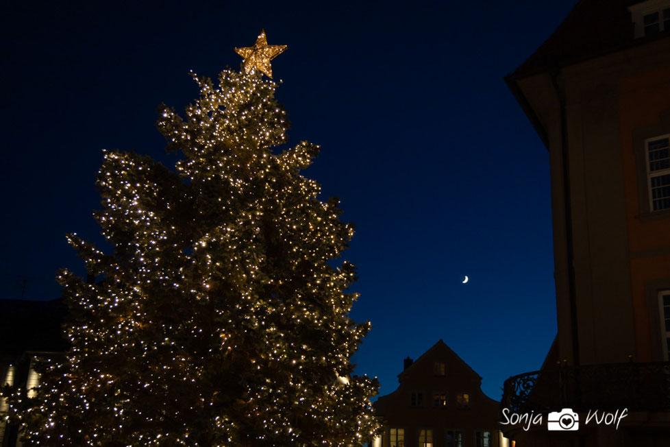 Weihnachtsbaum Ellwangen