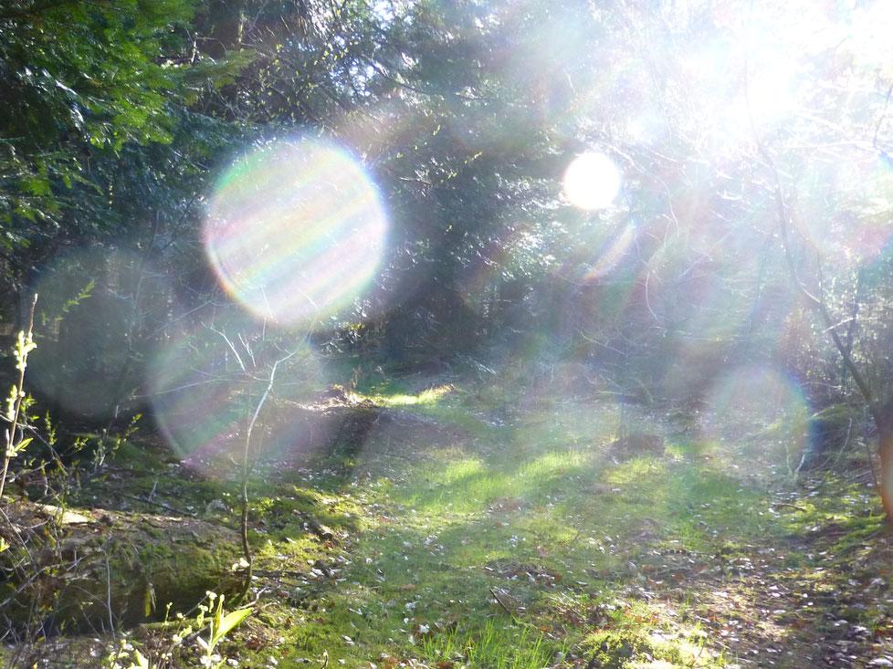Kosmischer Lichttertanz....27.04.2021, Quelle: www.lichtwesenfotografie.com