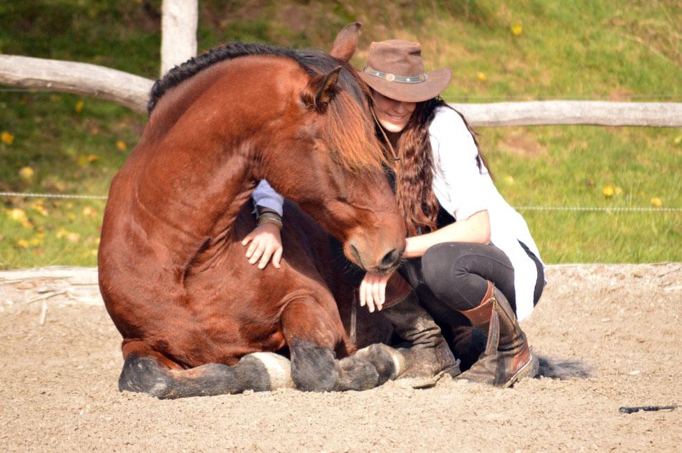 Tanja Groneberg Equestre Anspruchsvolles Freizeitreiten Schweiz Reiten Barock Pferdeosteoathie