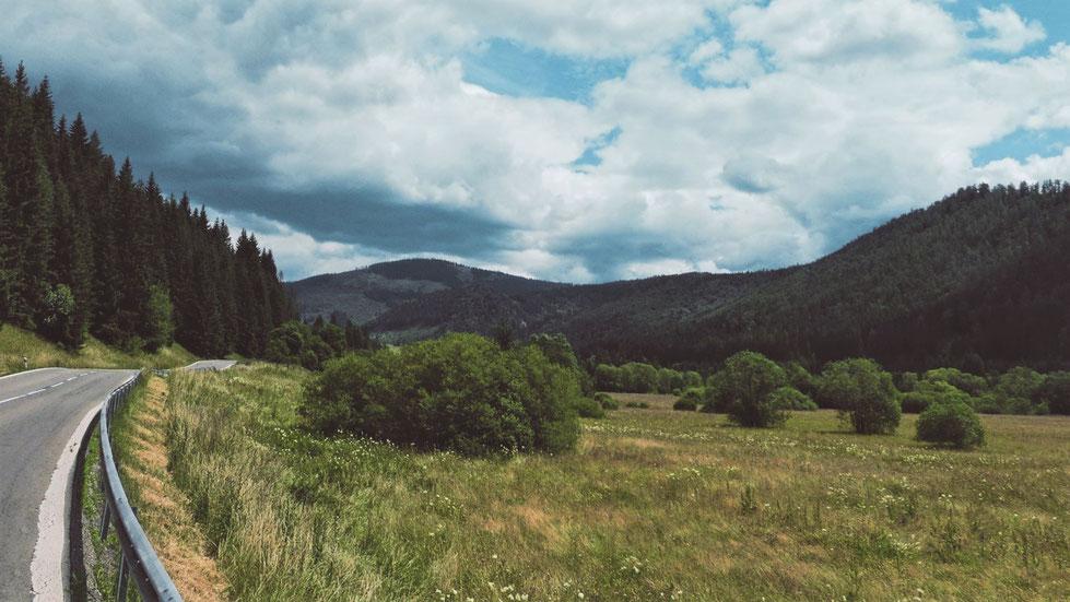 bigousteppes slovaquie foret montagnes