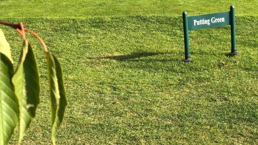Putting Green Golfpark Balmer See. Photo © Peter Schmidt