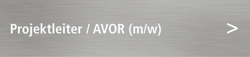 Bild: Projektleiter / AVOR