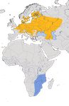 Karte zur Verbreitung des Sumpfrohrsängers (Acrocephalus palustris) weltweit.